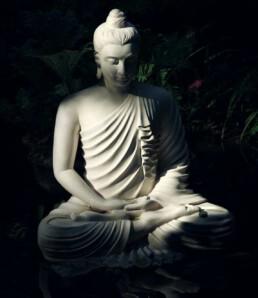 De magie van Yin Yoga